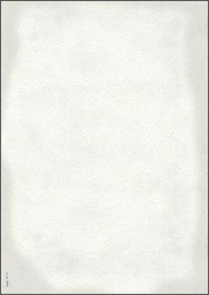 Speisekartenpapiere